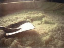 岩手県産米が生み出す「岩手の味」
