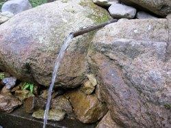 水が美味しいと評判の「水分神社」